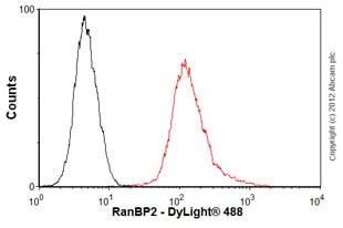 Flow Cytometry - Anti-RanBP2 antibody [mAbcam58385] (ab58385)