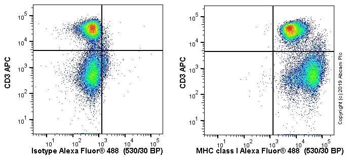 Flow Cytometry - Anti-MHC class I antibody [OX18] (ab6405)