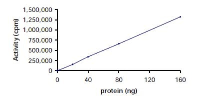 Functional Studies - Recombinant human Lck protein (ab60305)