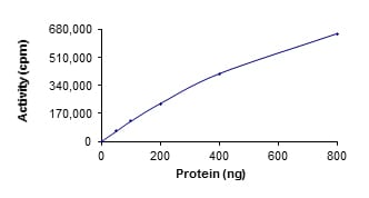 Functional Studies - Recombinant Src protein  (ab60884)
