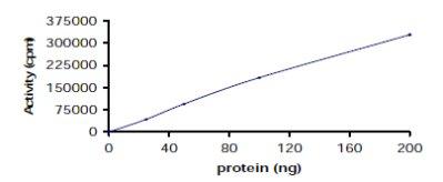 Functional Studies - Recombinant human ZAP70 protein (ab60963)