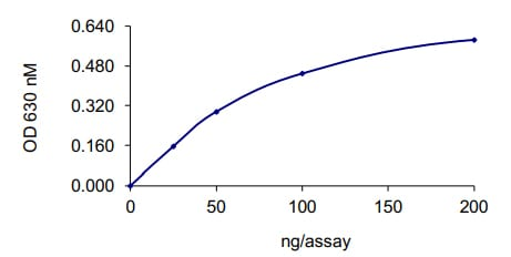 Functional Studies - Recombinant human SHP1 protein (ab61135)
