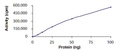 Functional Studies - Recombinant mouse PAK3 protein (ab61414)