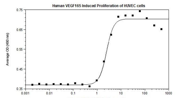 Functional Studies - Recombinant human VEGF 165A protein (ab61861)