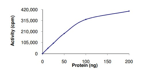 Functional Studies - Recombinant human GSK3 beta protein (ab63193)
