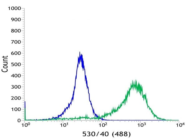 Flow Cytometry - Anti-Cytokeratin 5 antibody [SP27] (ab64081)