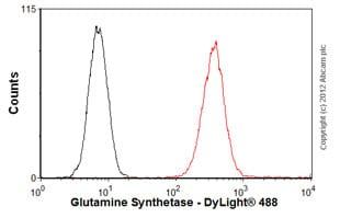 Flow Cytometry - Anti-Glutamine Synthetase antibody [3B6] - BSA and Azide free (ab64613)