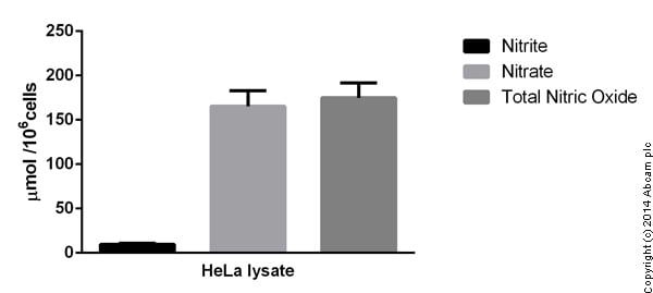 Functional Studies - Nitric Oxide Fluorimetric Assay Kit (ab65327)