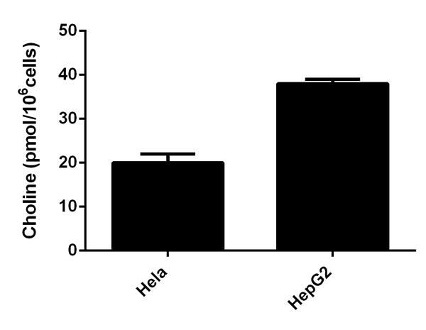 功能研究-胆碱/乙酰胆碱检测试剂盒(AB65 345)