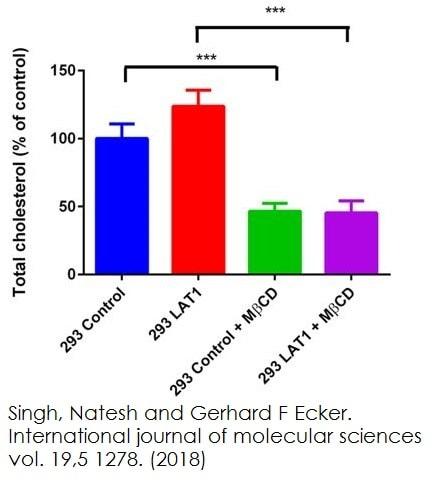 Functional Studies - Cholesterol/ Cholesteryl Ester Assay Kit - Quantitation (ab65359)