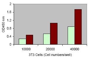 LDH Cytotoxicity Assay using ab65393