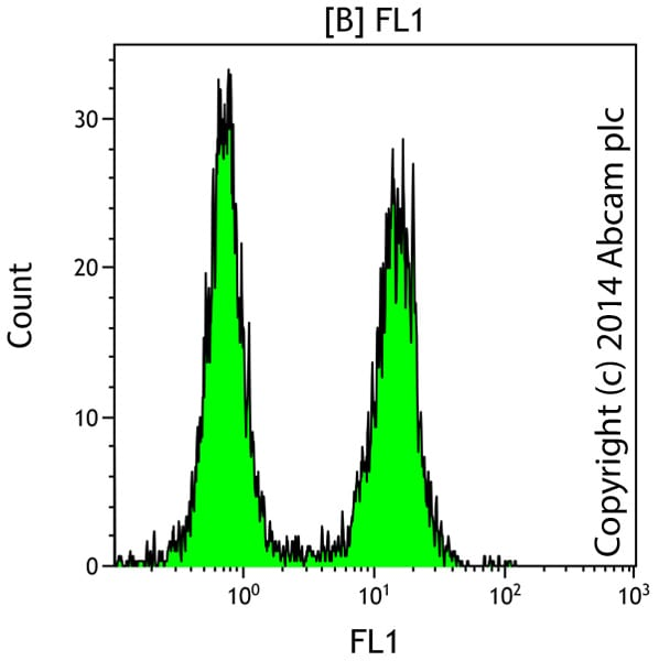 Functional assays: In situ Direct DNA Fragmentation (TUNEL) Assay Kit (ab66108)