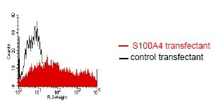 Flow Cytometry - Anti-S100A4 antibody [NJ4F3] (ab68124)