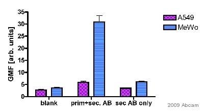 Flow Cytometry - Anti-Integrin alpha V beta 3 antibody [BV3] (ab7166)