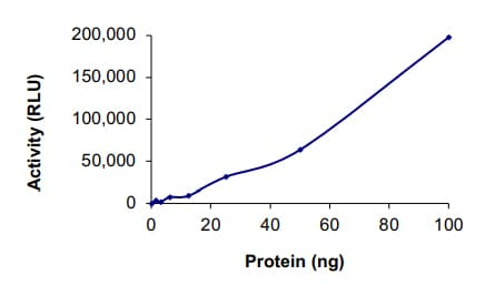 Functional Studies - Recombinant human CDK9+CyclinK protein (ab70320)