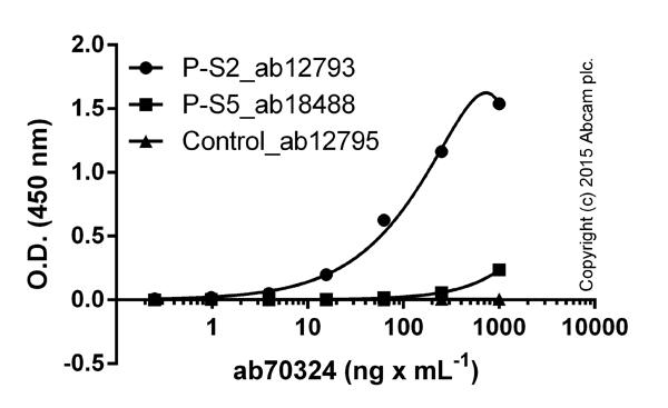 ELISA - Anti-RNA polymerase II CTD repeat YSPTSPS (phospho S2) antibody (ab70324)