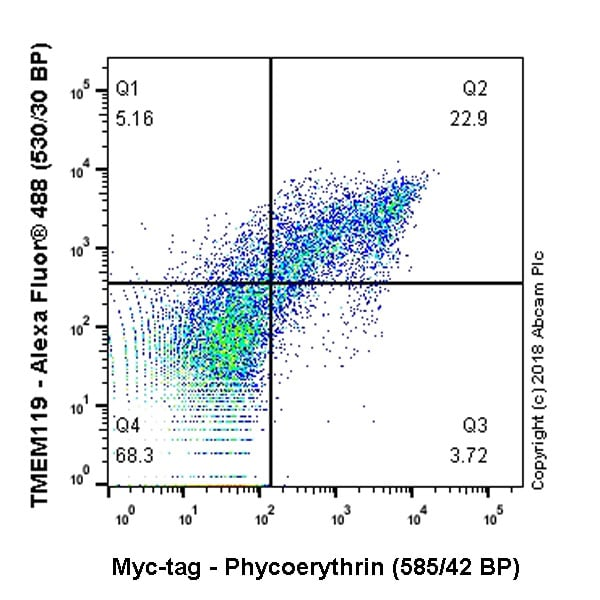 Flow Cytometry - Anti-Myc tag antibody [9E10] (Phycoerythrin) (ab72468)