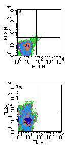 Flow Cytometry - Anti-MHC Qa1b antibody [6A8.6F10.1A6] (ab72487)