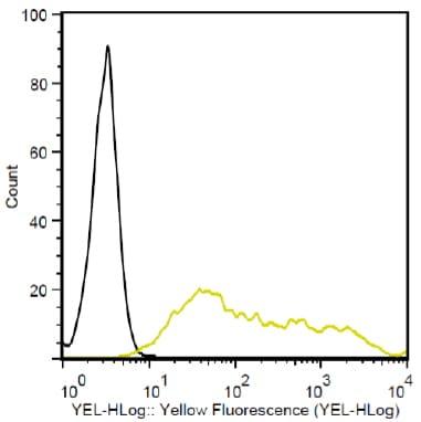 Flow Cytometry - PE Anti-T7 tag® antibody (ab72563)