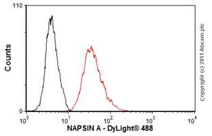 Flow Cytometry - Anti-NAPSIN A antibody [KCG1.1] (ab73021)