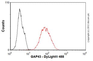 Flow Cytometry - Anti-GAP43 antibody [EP890Y] (ab75810)