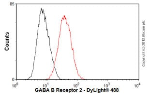 Flow Cytometry - Anti-GABA B Receptor 2 antibody [EP2411Y] (ab75838)