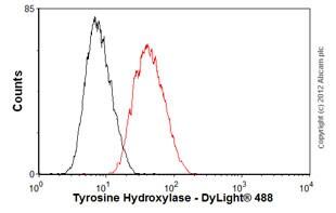 Flow Cytometry - Anti-Tyrosine Hydroxylase antibody [EP1533Y] (ab75875)