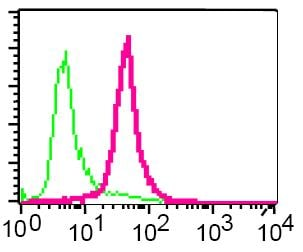 Flow Cytometry - Anti-Calpain 2 antibody [EPR2562Y] (ab75994)