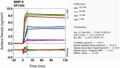 Other - Anti-MMP9 antibody [EP1254] (ab76003)