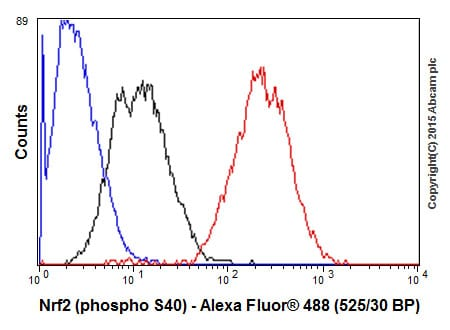 Flow Cytometry - Anti-Nrf2 (phospho S40) antibody [EP1809Y] (ab76026)