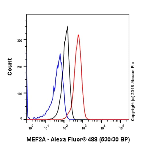 Flow Cytometry - Anti-MEF2A antibody [EP1706Y] (ab76063)