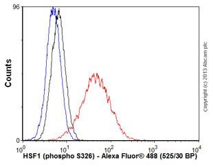 Flow Cytometry - Anti-HSF1 (phospho S326) antibody [EP1713Y] (ab76076)