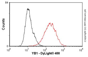 Flow Cytometry - Anti-YB1 antibody [EP2708Y] (ab76149)