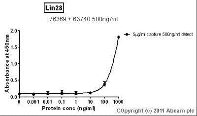 Sandwich ELISA - Anti-Lin28 antibody [6D1F9] (ab76369)