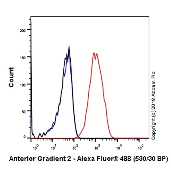 Flow Cytometry - Anti-Anterior Gradient 2 antibody [EPR3278] (ab76473)