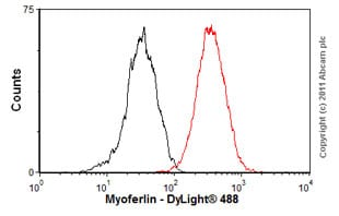 Flow Cytometry - Anti-Myoferlin antibody [7D2] (ab76746)
