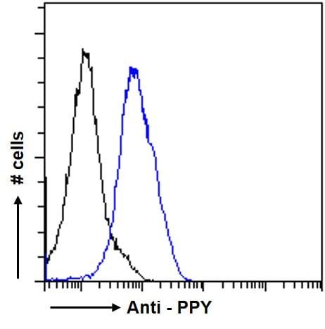 Immunohistochemistry (Formalin/PFA-fixed paraffin-embedded sections) - Anti-Pancreatic Polypeptide antibody (ab77192)