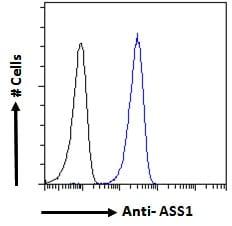 Flow Cytometry - Anti-ASS1 antibody (ab77590)
