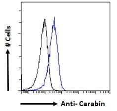Flow Cytometry - Anti-carabin antibody (ab77625)