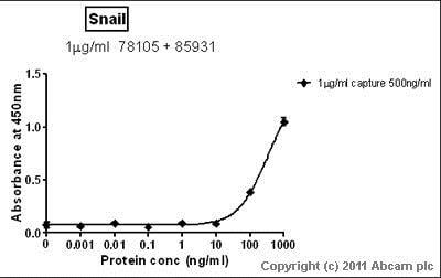 Sandwich ELISA - Anti-SNAIL + SLUG antibody [20C8] (ab78105)