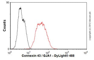 Flow Cytometry - Anti-Connexin 43 / GJA1 antibody [4E6.2] (ab79010)