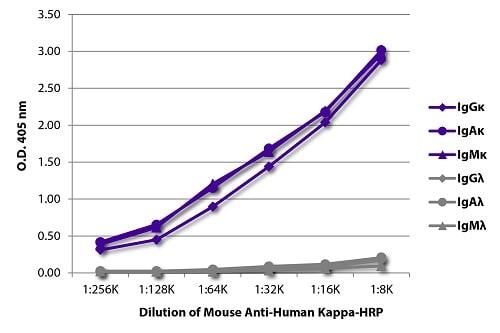 ELISA - Anti-Human Kappa Chain antibody [SB81a] (HRP) (ab79115)