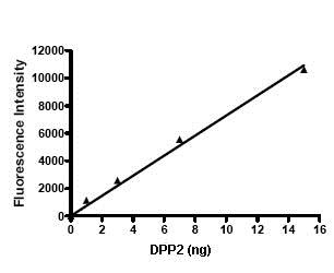 Functional Studies - Recombinant human DPP2 protein (ab79660)