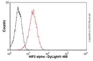 Flow Cytometry - Anti-HIF-2-alpha antibody [ep190b] (ab8365)