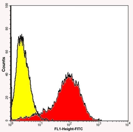 Flow Cytometry - Anti-p75 NGF Receptor antibody (ab8874)
