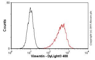 Flow Cytometry - Anti-Vimentin antibody [RV203] (ab8979)