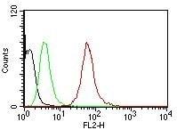 Flow Cytometry - Anti-pan Cytokeratin antibody [AE1/AE3] - BSA and Azide free (ab80826)