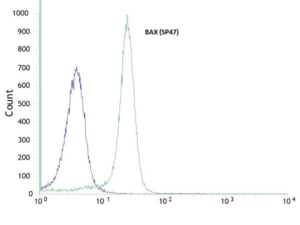 Flow Cytometry - Anti-Bax antibody [SP47] (ab81083)