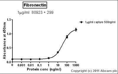 Sandwich ELISA - Native Human Fibronectin protein (ab81743)