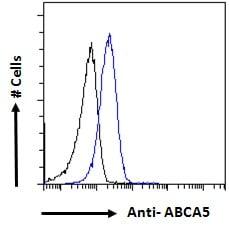 Flow Cytometry - Anti-ABCA5 antibody (ab82582)